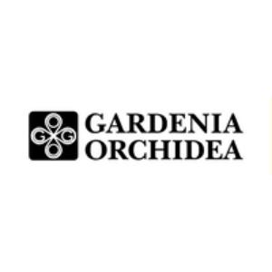 Изображение для производителя Gardenia Orchidea